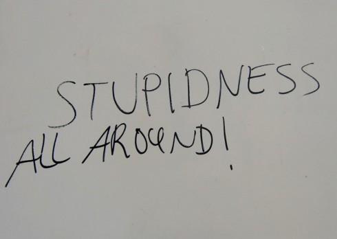 stupidness